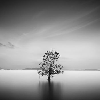 life by howpin