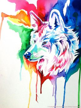 Rainbow Wolf Commission 2 by Lucky978