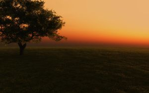 Afternoon shadows_sunset by relhom