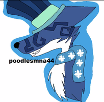 even more art of poodle by Ferretser