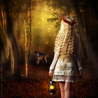 Into the Woods. by Inadesign