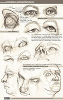 Drawing eyes - anatomy and perspective by greyfin