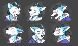 Commission: Kemonone Rou's Expression Sheet by Temiree