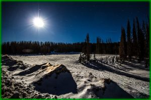 Bright Full Moon over Rio Grande National Forest by ByLagarto
