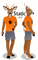 Static Character Sheet by weathereddragon