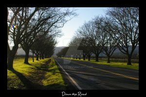 Down the Road by lawlez