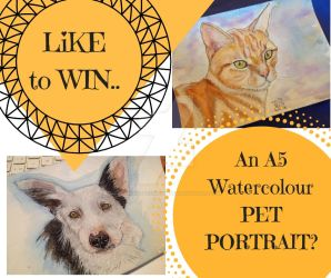 Win a Sketch of your PET!! by DreamingofDarkhorses