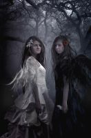 Good and Evil by phatpuppy