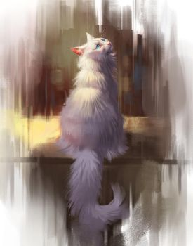 White Cat Study by TehChan