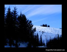 Concurs ID by_Deepsil3nc3 by Ro-nature