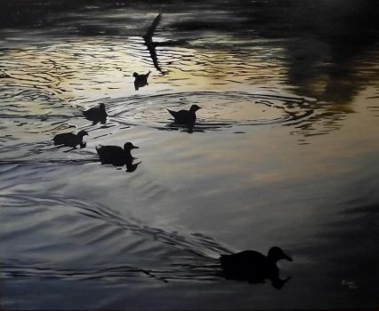 Ducks at sunset. by rvc89