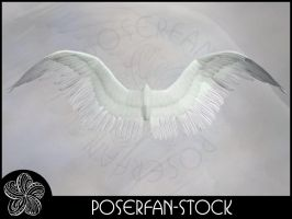 Angel Wings 003 by poserfan-stock