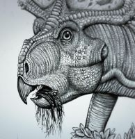 Protoceratops  chew  the  tubers by MALvit