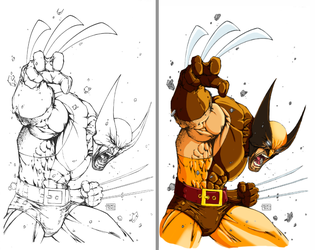 Wolverine - B4 and After Color by criv215