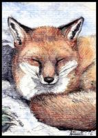 Winter (ACEO) by Nanook94