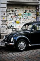 Beetle by puddingtown