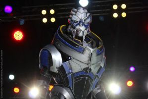 Garrus Cosplay V by HoldW