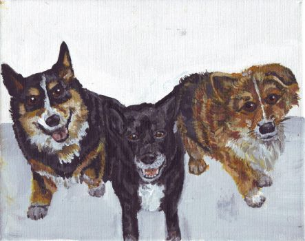 3 dogs by amybalot