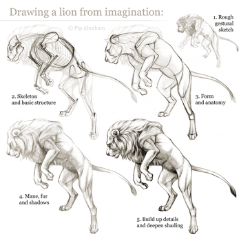 Tutorial: Drawing a lion from imagination by oxpecker