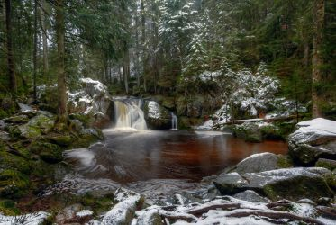 Black Forest Pool by cprmay