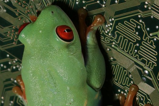 red-eyed on the mainboard by bugalirious-STOCK