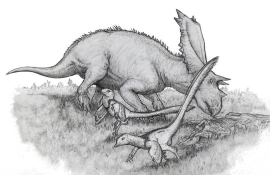 Chasmosaurus Charge by Ashere