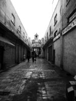 Mexican Alley by Archiver-Cante