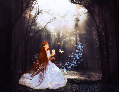 Enchanted Forest by leemyon