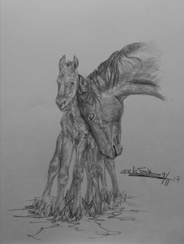 Norse horse by Devions