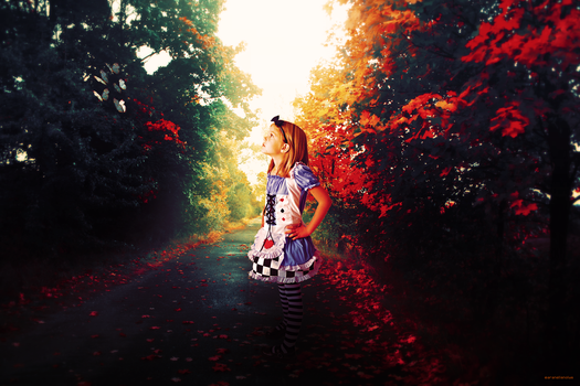 Little Alice in Wonderland by aranellenolwe