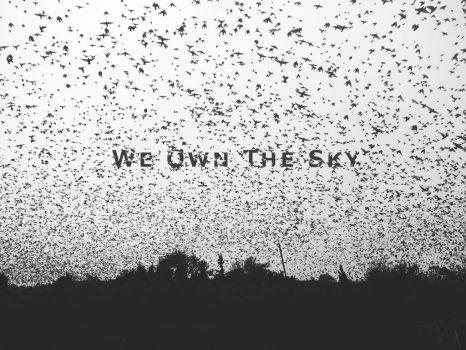 We Own The Sky by Zoroo