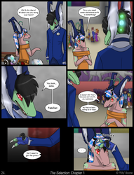 The Selection - page 24 by AlfaFilly