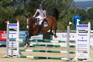 Level 5 Showjumping - L-Springen 52 by LuDa-Stock
