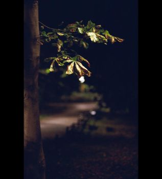 October Night by ionWill