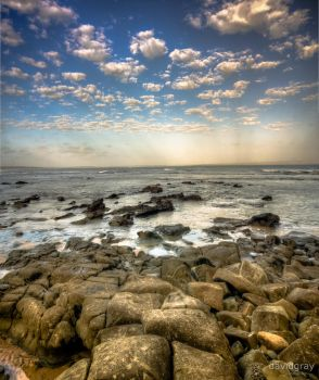 Cape Patterson by Grayda