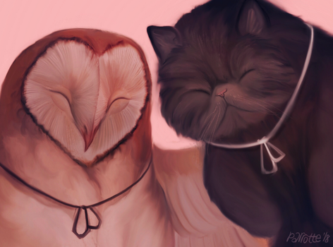 cat and owl by parrotte