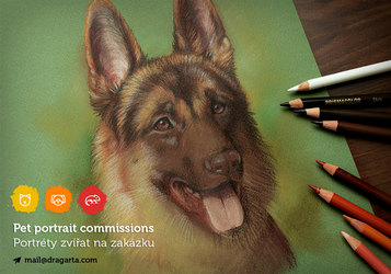 Pet portrait commissions OPEN by Dragarta