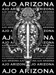 Ajo Arizona Horned Toad by Hop41