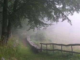 A path to nowhere by sirmmo