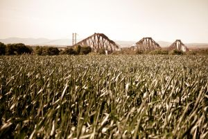 Forth Bridge by doches