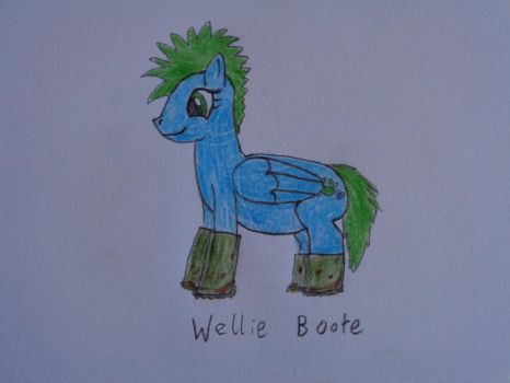 Wellie Boote by woodywoodwood