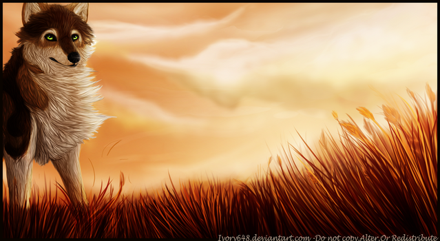 Into The Sun by Ivory648