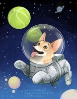 Corgi in Space by keevs