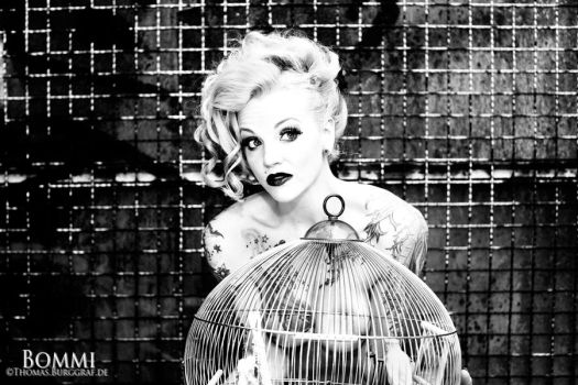 birdcage by bommi
