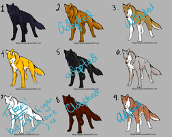 points adopts by star-shine335