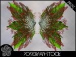 Berry Fairy Wings by poserfan-stock