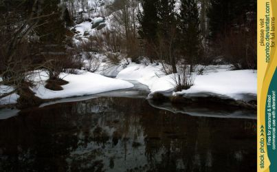 Pond in winter 1 by RoonToo