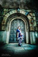 American McGee's Alice. Doorway to a twisted world by hmcindie