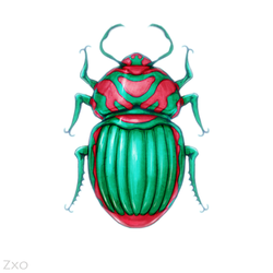 Red and green bug by Zxoqwikl