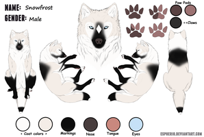 Snowfrost Ref Sheet by Winter-shadow35